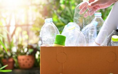How To Make Recycling Easier For You And Your Busy Family