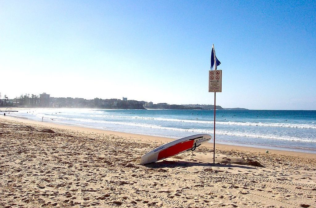 Keep It Clean With Northern Beaches Skip Bin Hire, Sydney